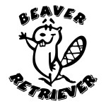 Beaver Retriever Funny Stickers