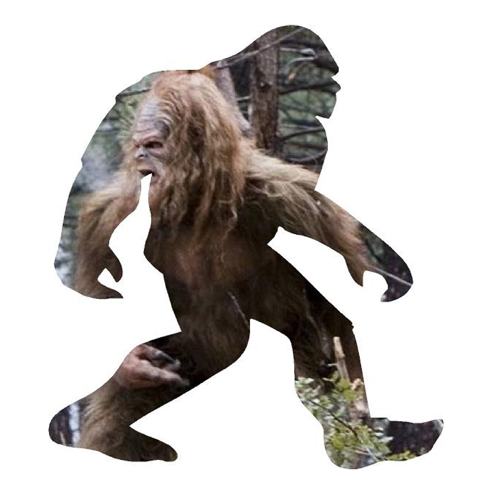 Big Foot Inside Big Foot Funny Stickers Animal Decals