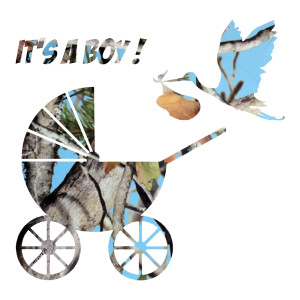 Blue Camo It's A Boy Stickers Car Decals
