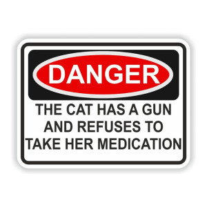 Cat Has A Gun Funny Stickers
