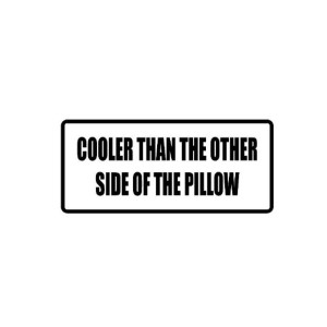 Cooler Than Pillow Funny Stickers