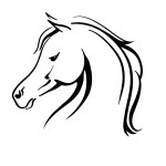 Horse Arabian Stickers Animal Stickers Wall Decals