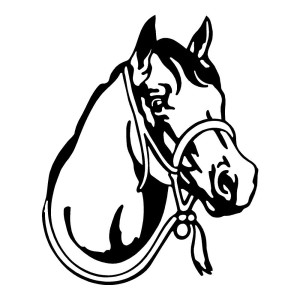 Horse Bridle Horses Stickers Car Decals Wall Decals