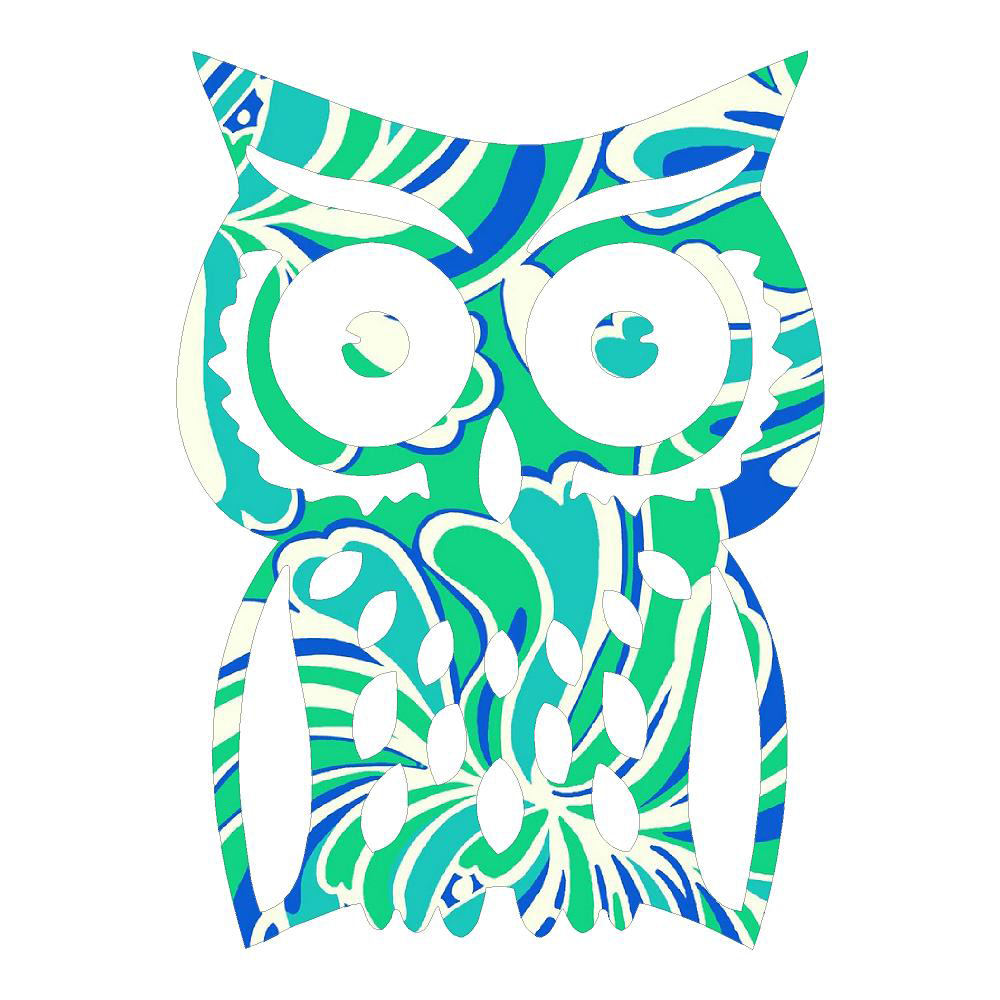 Lime and Blue Owl Die Cut Sticker