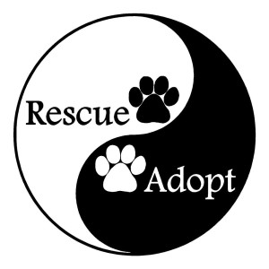 Rescue and Adopt Sticker Animal Stickers Car Decals