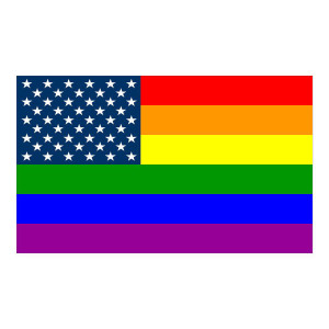 United States Flag Rainbow Equality Stickers